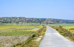 Strada Uchali del lago alla valle presto Immagine Stock Libera da Diritti