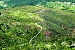 Strada in un bello paesaggio verde della montagna Immagini Stock