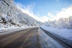 Strada in un giorno soleggiato, passaggio di Rikoti, Georgia della montagna Immagine Stock Libera da Diritti