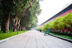 Strada in un parco Immagine Stock