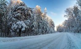 Strada in una foresta, Russia, i Urals di inverno di Snowy, Immagine Stock Libera da Diritti