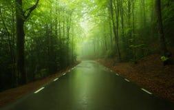 Strada in una foresta verde della molla al parco naturale di Montseny Fotografia Stock
