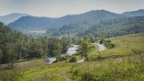 Strada in una valle della montagna lungo il fiume e la foresta Fotografia Stock