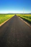 Strada ungherese della campagna Immagini Stock