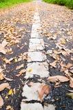 Strada utilizzata Immagini Stock Libere da Diritti
