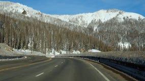 Strada verso la foresta del luccio nell'inverno Fotografia Stock