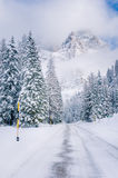 Strada vuota della montagna attraverso una foresta di inverno sotto cielo blu con le nuvole Fotografia Stock