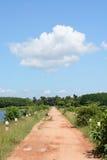 Strada vuota in giungla della Tailandia Fotografia Stock Libera da Diritti