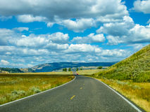 Strada in Yellowstone Immagine Stock Libera da Diritti