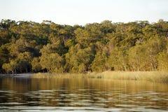 stradbroke wyspy jeziora stradbroke zdjęcia stock