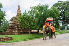 The straddle elephant sightseeing old city popular with tourists Royalty Free Stock Photography