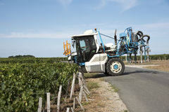 Straddle tractor spraying vines in France Stock Image
