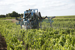 Straddle tractor spraying vines in France Royalty Free Stock Image