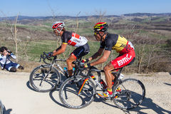 Strade Bianche 2012 Stock Image