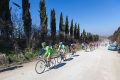 Strade Bianche 2012 Stock Photos