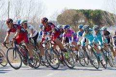 Strade Bianche 2012 Foto de Stock Royalty Free