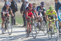 Strade Bianche 2012 Stock Images