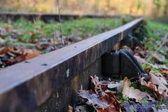 Strade ferrate abbandonate in foresta Fotografia Stock Libera da Diritti