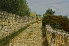 Stradina of country in the peninsula salentina royalty free stock photos