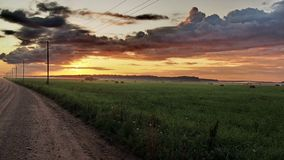 Straße, Grünfeld und orange Wolken bei Sonnenuntergang Stockfoto