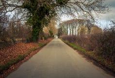 Straße in ländlichem Großbritannien Lizenzfreies Stockfoto