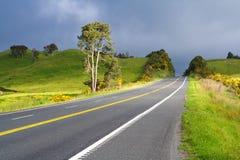 Straße mit gemalter doppelter gelber Zeile, Neuseeland Lizenzfreie Stockfotos