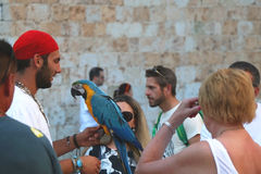 Straßenausführender in Dubrovnik Stockfotografie