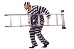 Straffångebrottsling Arkivbild