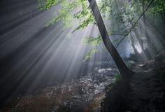 Strahlen der Sonne über dem Fluss Stockfotos