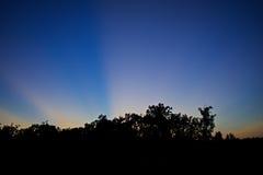 Strahlen des Sonnenscheins Stockbild