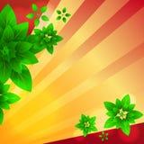 Strahlen und Blätter Lizenzfreies Stockbild