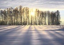 Strahlen und Schatten laufen auf einer schneebedeckten Ebene auseinander stockfotografie