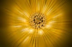 strahlendes Gold Stockfotografie