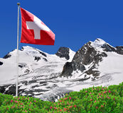 Strahlhorn,Rimpfisc hhorn and Allalinhorn with Swiss flag Stock Photography