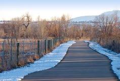 Straight Ahead Path Through the Prairie Royalty Free Stock Photo