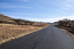Straight Asphalt Road Lined with Dry Grass Royalty Free Stock Photos