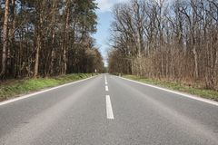 Straight asphalt road in the middle of a forest, under a blue sk Stock Images