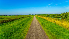 Straight bicycle path over the dike along the the bird sanctuary of Veluwemeer Royalty Free Stock Images