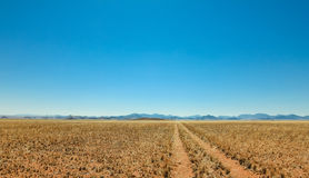 Straight desert dirt road track passes a grassland towards mountains. Stock Photos