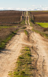Straight Dirt Road Between Fields Agriculture. Used dirt road in rolling countryside between newly plowed farmland in autumn stock photos