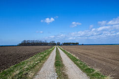 Straight dirt road Stock Photography