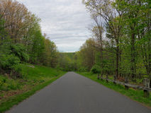 Straight Downhill. A road going straight downhill, surrounded by a lush green Pennsylvania mountain forest Royalty Free Stock Photo