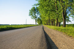 Straight empty road in afternoon Stock Image