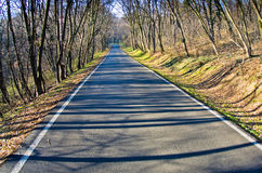 Straight forest road at early spring Royalty Free Stock Images