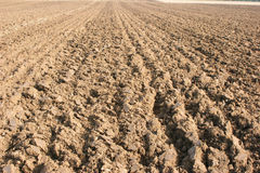 A straight furrow. Straight furrows at a ploughing match Stock Photo