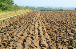 Straight furrows on a plowed or ploughed field Stock Photos