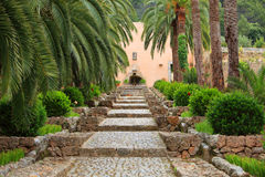 Straight garden walkway with cobblestones Royalty Free Stock Photos