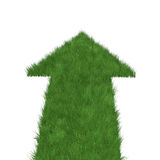 Straight grass arrow Royalty Free Stock Photos