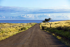 Straight gravel road in Easter Island Stock Photo
