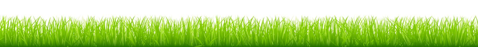 Graphic Straight Green Meadow Long Horizontal Banner royalty free illustration